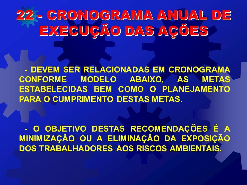 22 - CRONOGRAMA ANUAL DE EXECUÇÃO DAS AÇÕES