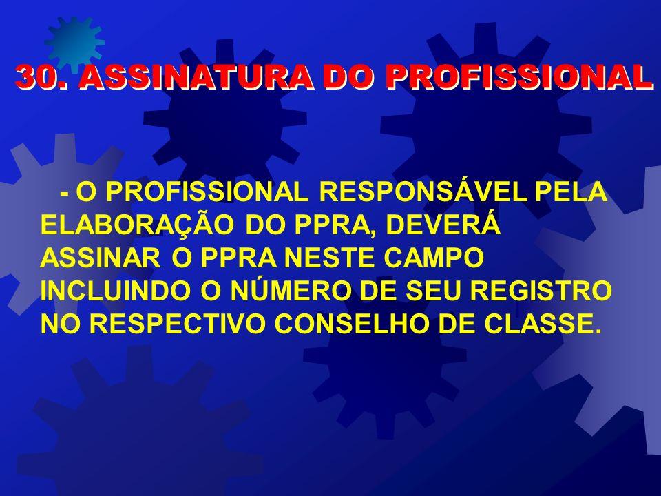 30. ASSINATURA DO PROFISSIONAL
