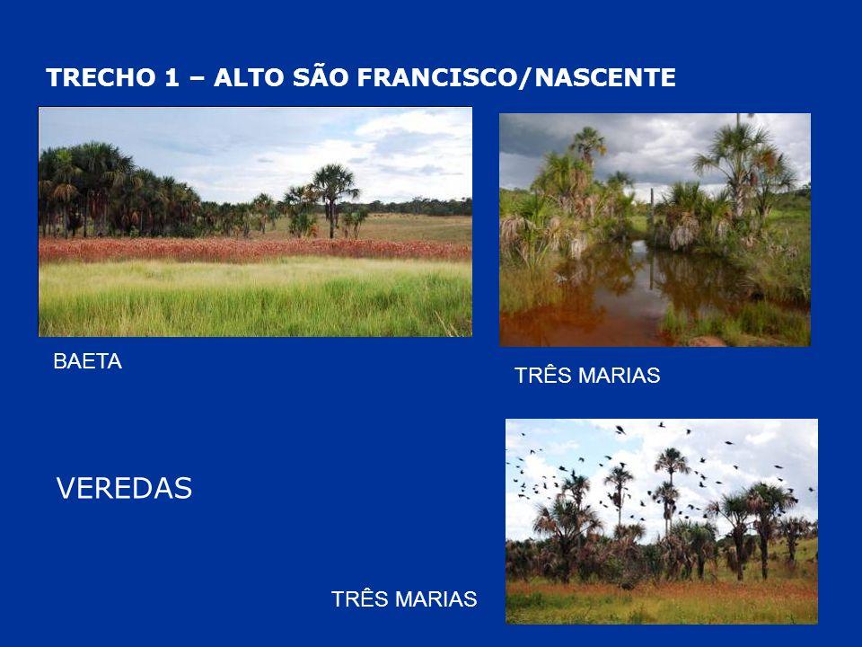 VEREDAS TRECHO 1 – ALTO SÃO FRANCISCO/NASCENTE BAETA TRÊS MARIAS