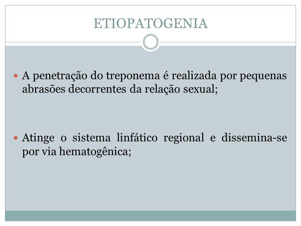 ETIOPATOGENIA A penetração do treponema é realizada por pequenas abrasões decorrentes da relação sexual;