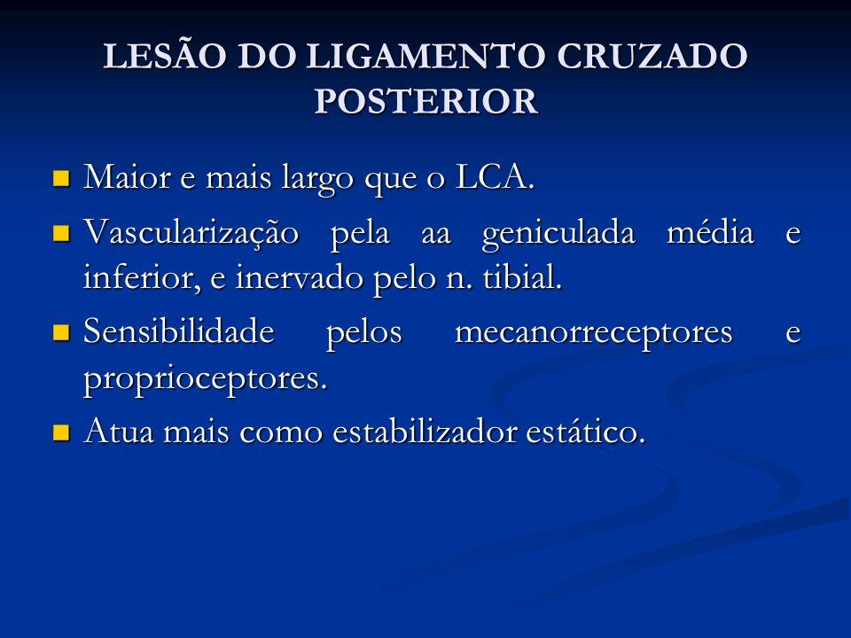LESÃO DO LIGAMENTO CRUZADO POSTERIOR
