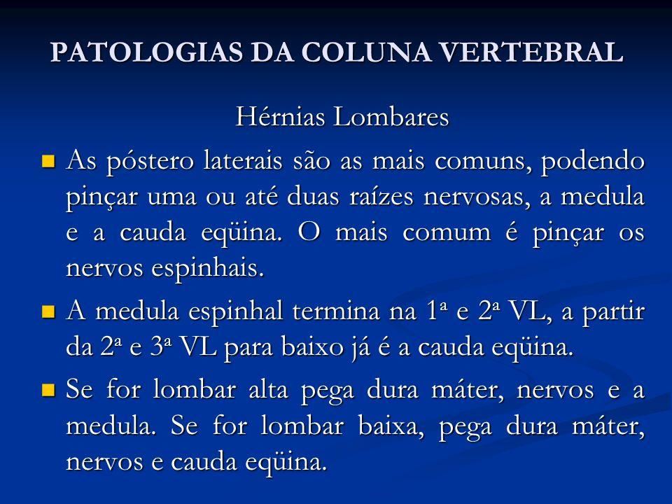 PATOLOGIAS DA COLUNA VERTEBRAL