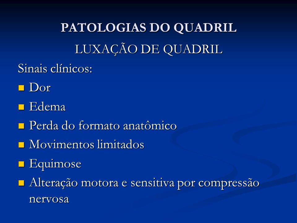 PATOLOGIAS DO QUADRIL LUXAÇÃO DE QUADRIL. Sinais clínicos: Dor. Edema. Perda do formato anatômico.