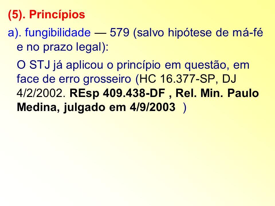 (5). Princípios a). fungibilidade — 579 (salvo hipótese de má-fé e no prazo legal):