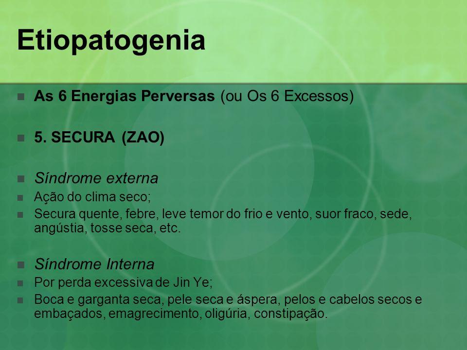 Etiopatogenia As 6 Energias Perversas (ou Os 6 Excessos)