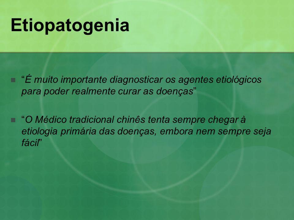 Etiopatogenia É muito importante diagnosticar os agentes etiológicos para poder realmente curar as doenças
