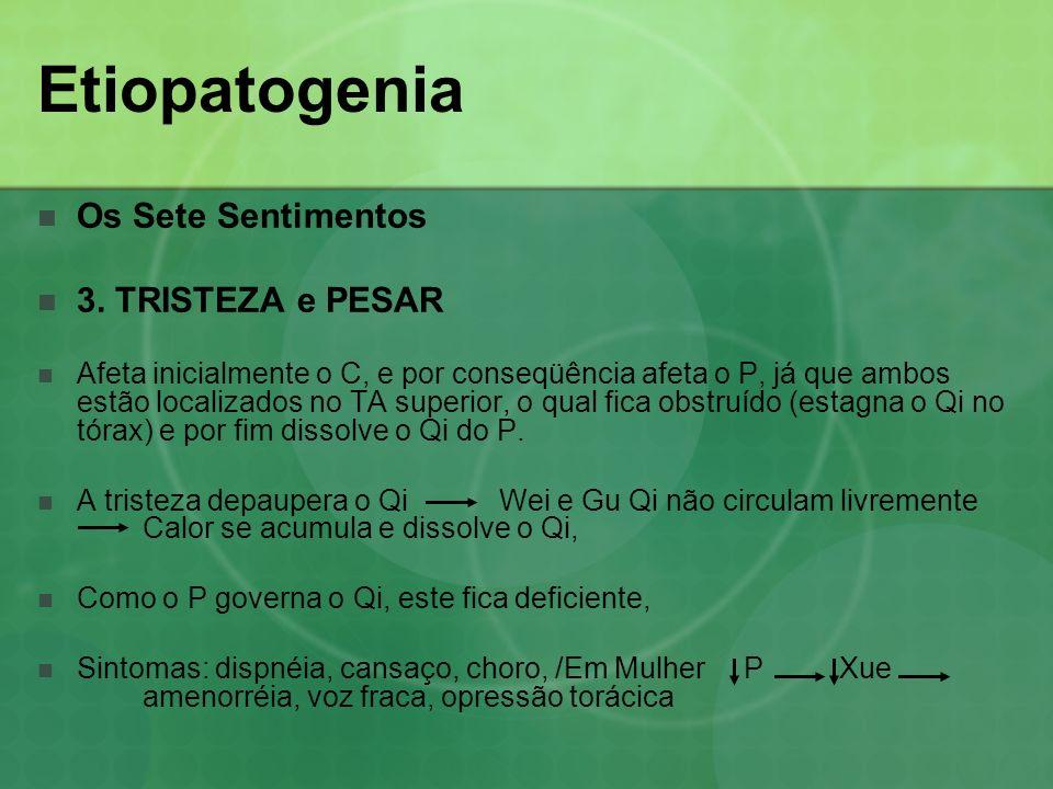 Etiopatogenia Os Sete Sentimentos 3. TRISTEZA e PESAR