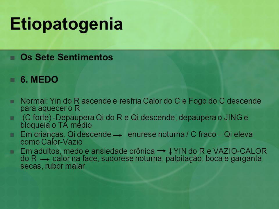 Etiopatogenia Os Sete Sentimentos 6. MEDO