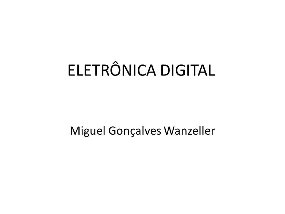 Miguel Gonçalves Wanzeller