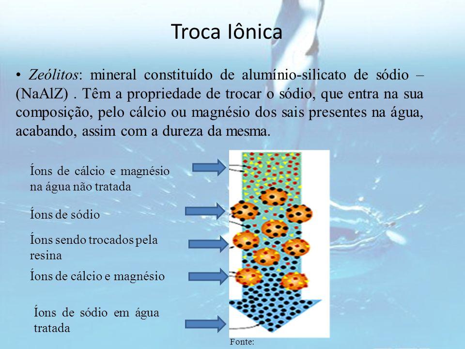 Troca Iônica