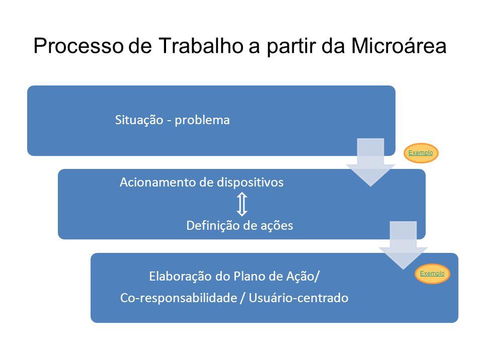 Processo de Trabalho a partir da Microárea