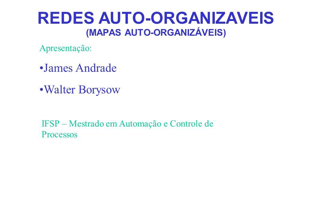 REDES AUTO-ORGANIZAVEIS (MAPAS AUTO-ORGANIZÁVEIS)