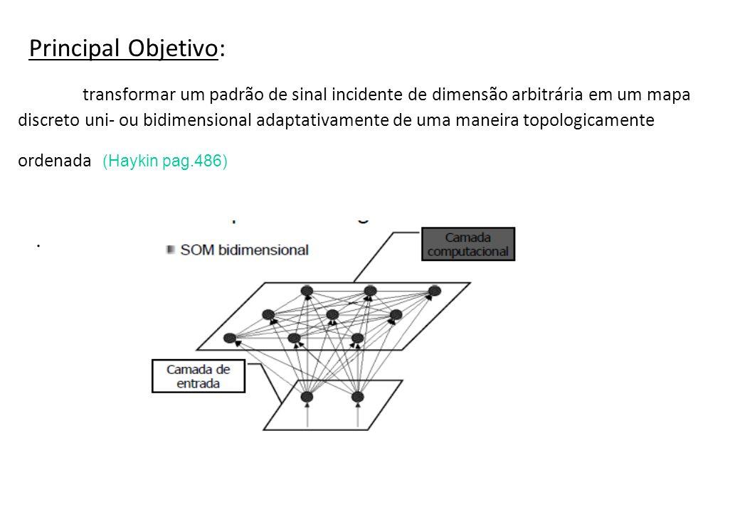 Principal Objetivo: transformar um padrão de sinal incidente de dimensão arbitrária em um mapa discreto uni- ou bidimensional adaptativamente de uma maneira topologicamente ordenada (Haykin pag.486)