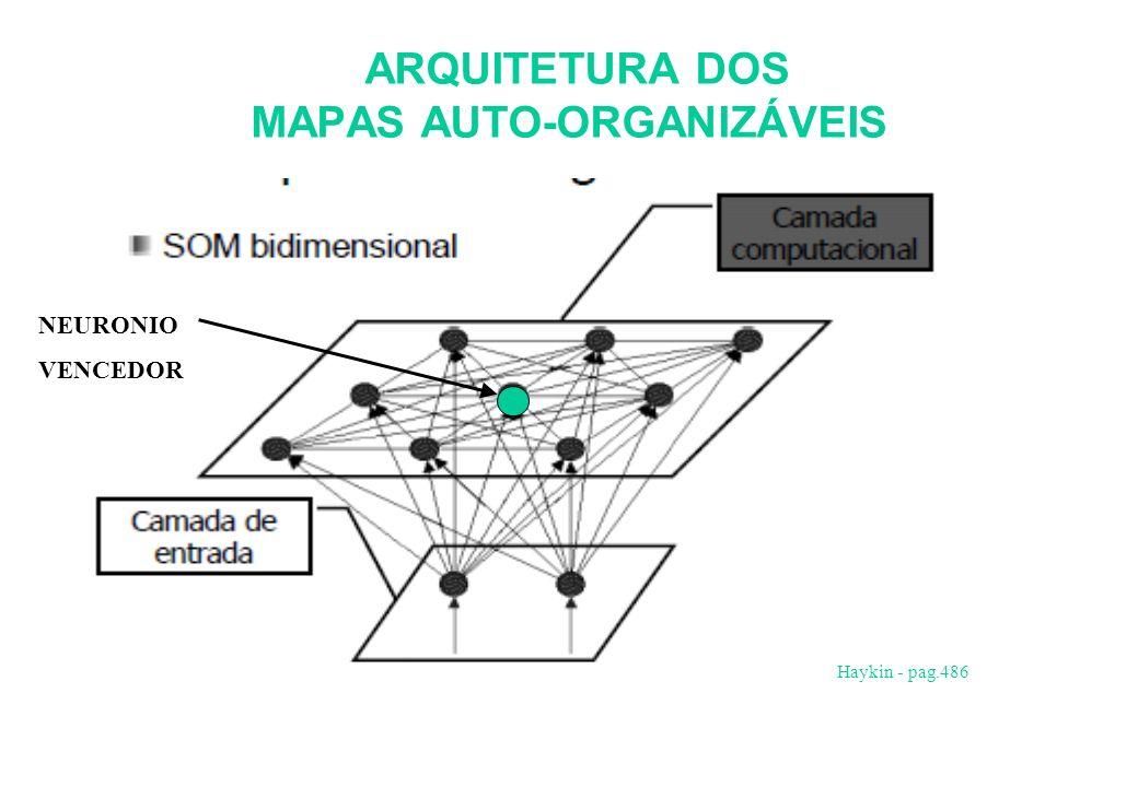 ARQUITETURA DOS MAPAS AUTO-ORGANIZÁVEIS