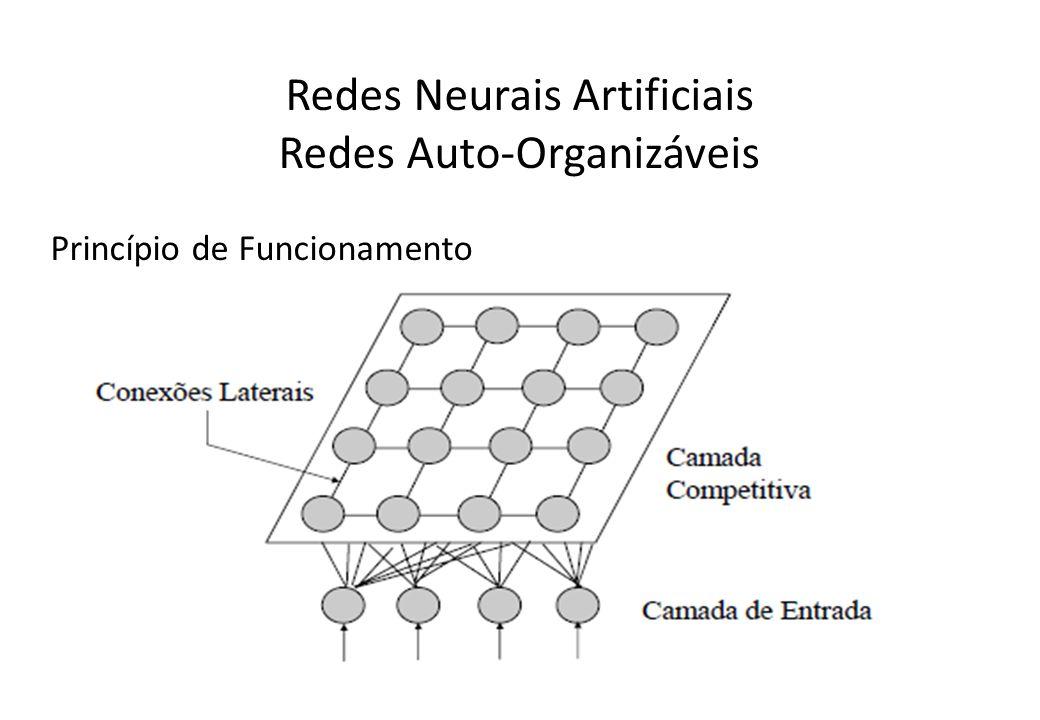 Redes Neurais Artificiais Redes Auto-Organizáveis