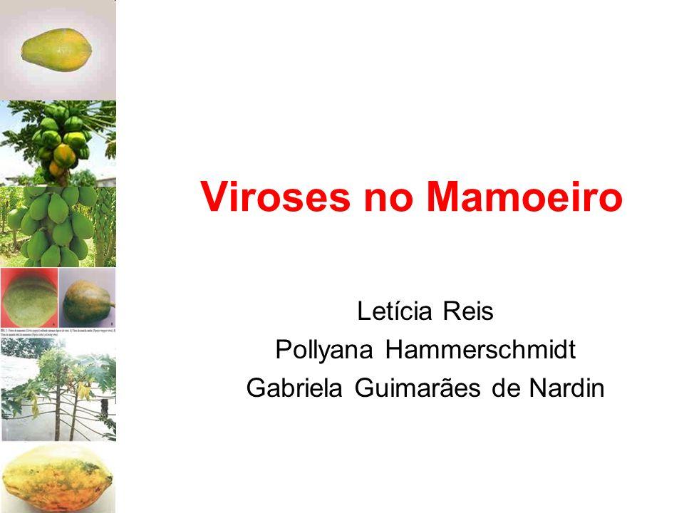 Letícia Reis Pollyana Hammerschmidt Gabriela Guimarães de Nardin
