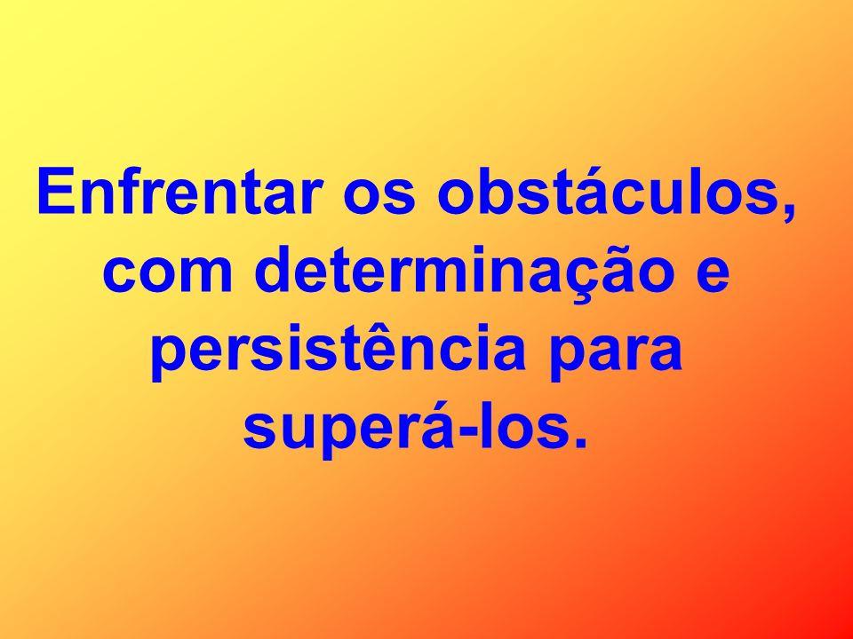 Enfrentar os obstáculos, com determinação e persistência para superá-los.