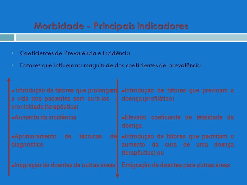 Morbidade - Principais indicadores