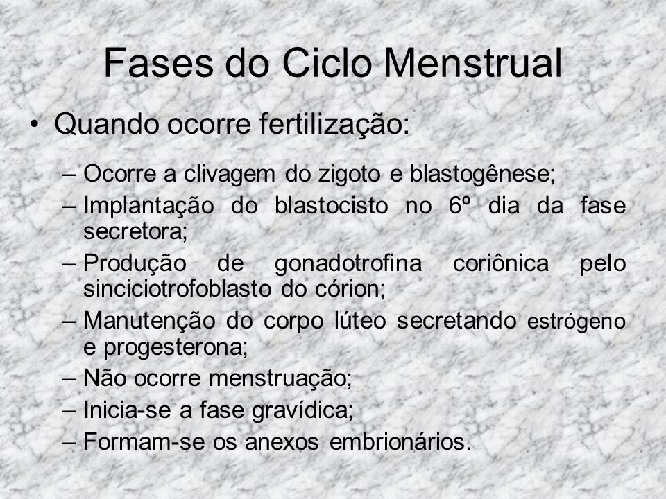 Fases do Ciclo Menstrual