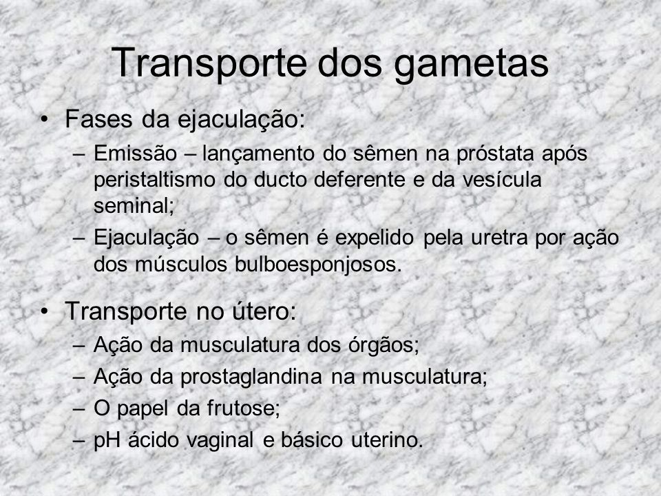 Transporte dos gametas