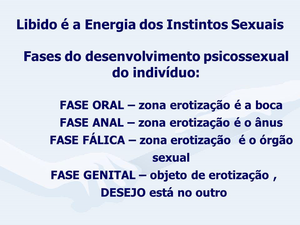 Libido é a Energia dos Instintos Sexuais