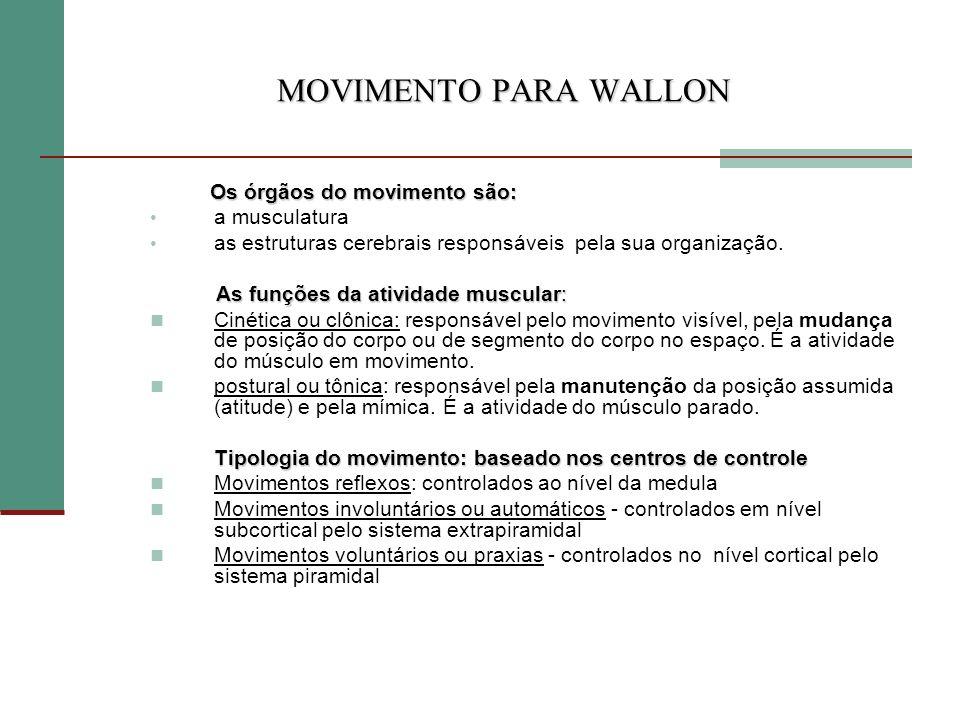MOVIMENTO PARA WALLON Os órgãos do movimento são: a musculatura