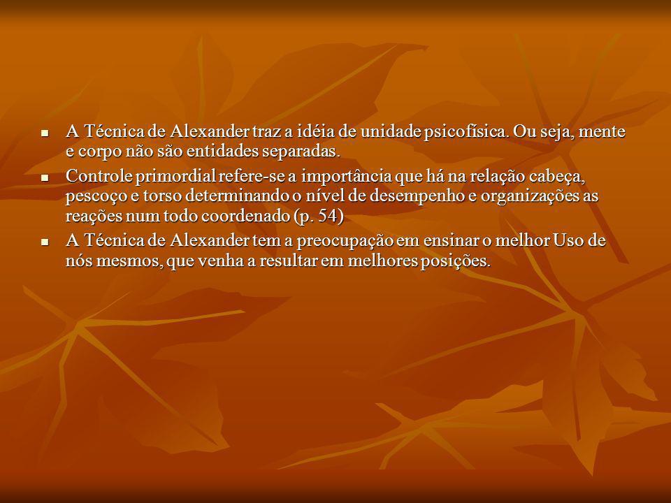 A Técnica de Alexander traz a idéia de unidade psicofísica