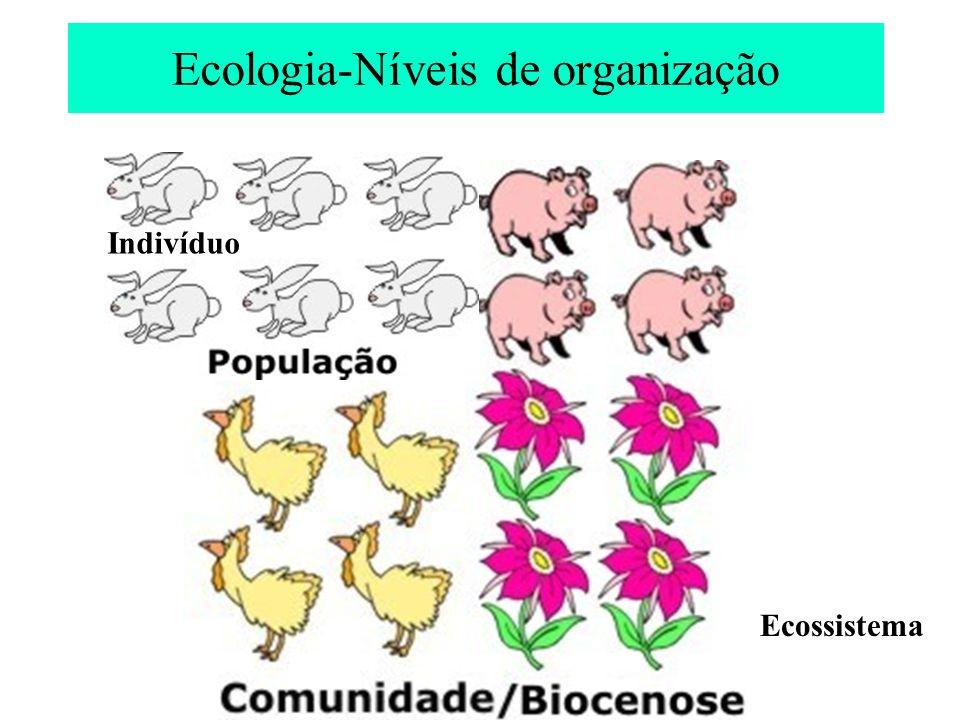 Ecologia-Níveis de organização