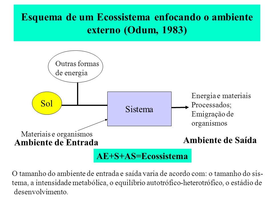Esquema de um Ecossistema enfocando o ambiente externo (Odum, 1983)