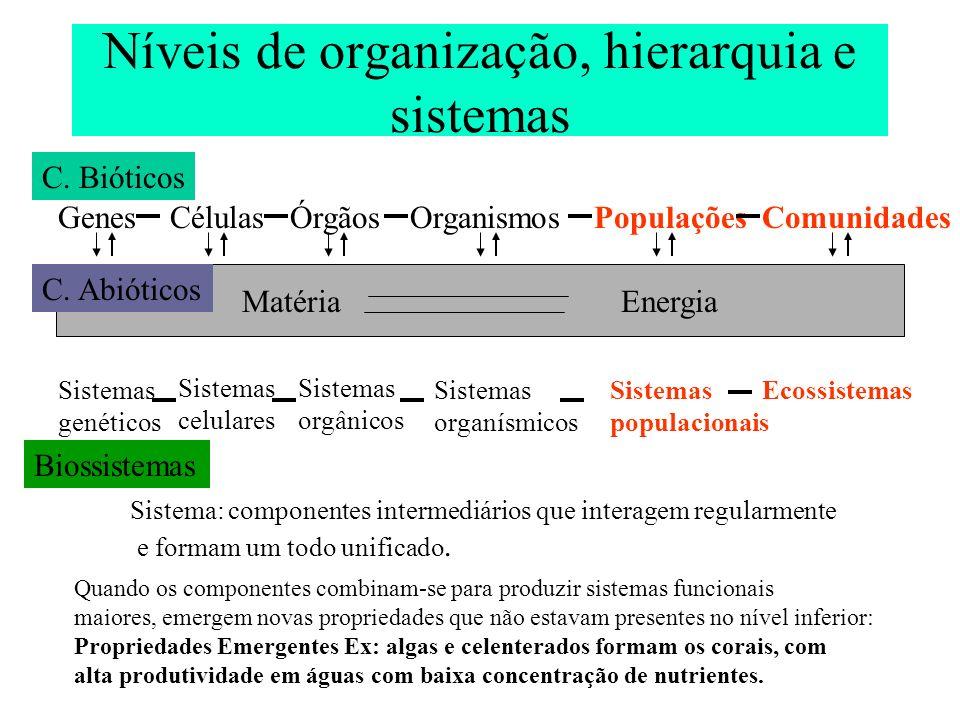 Níveis de organização, hierarquia e sistemas