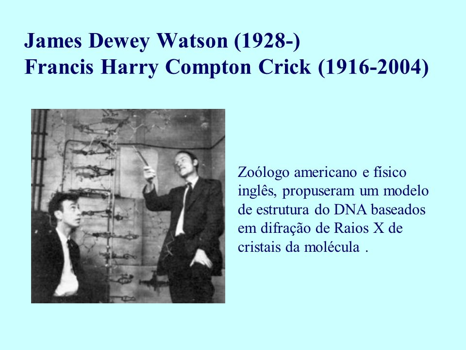 James Dewey Watson (1928-) Francis Harry Compton Crick (1916-2004)