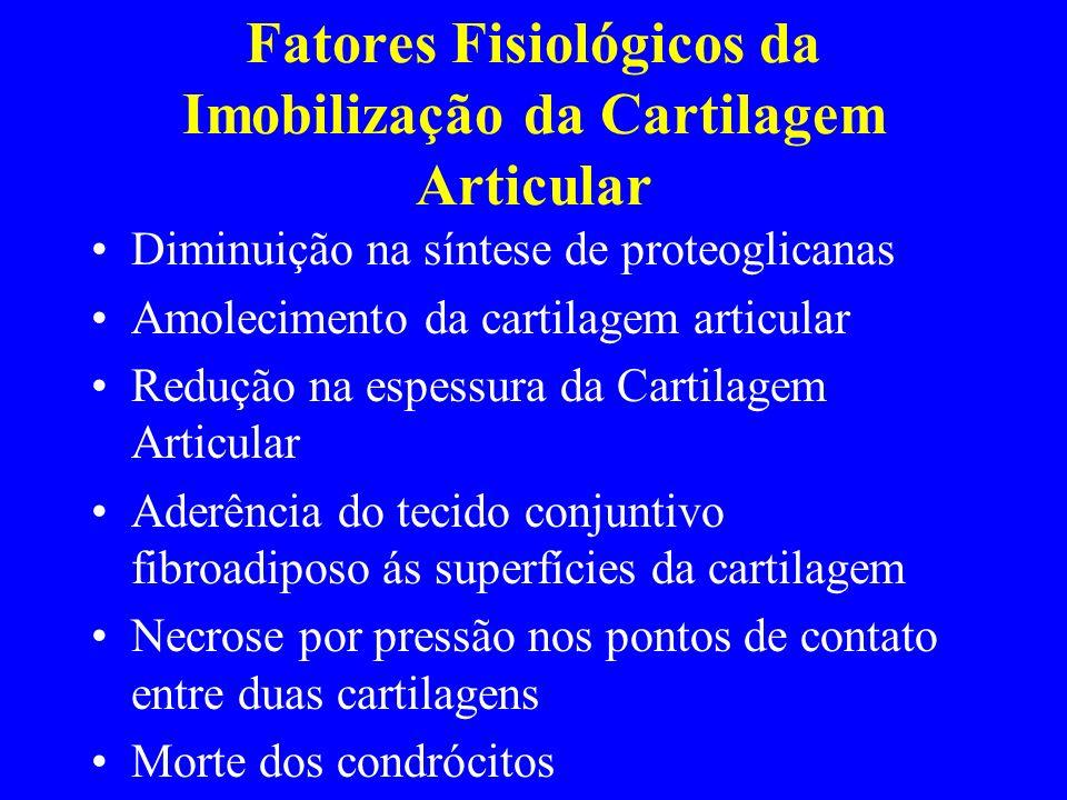 Fatores Fisiológicos da Imobilização da Cartilagem Articular