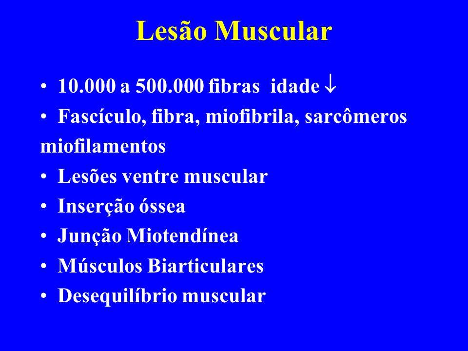 Lesão Muscular 10.000 a 500.000 fibras idade 