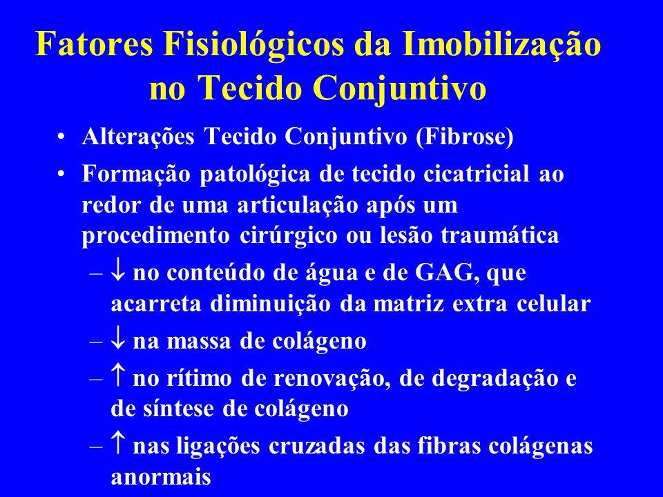 Fatores Fisiológicos da Imobilização no Tecido Conjuntivo