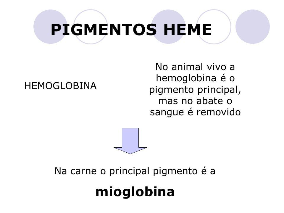 Na carne o principal pigmento é a