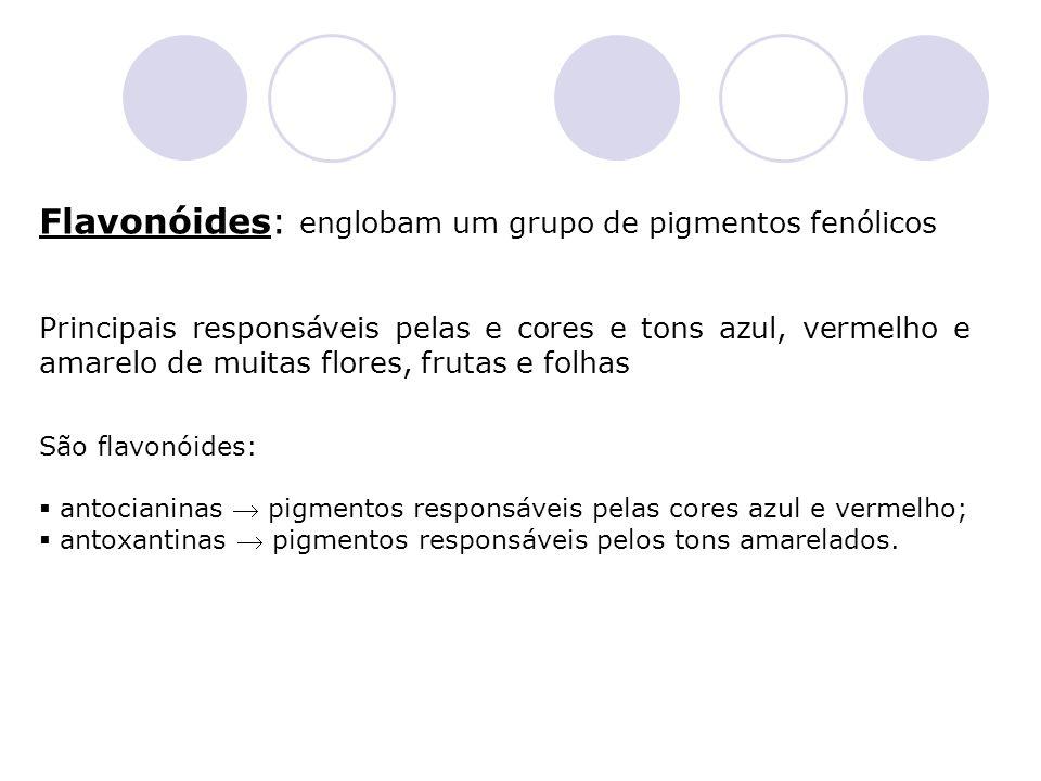 Flavonóides: englobam um grupo de pigmentos fenólicos
