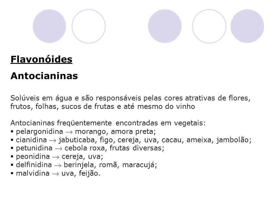 Flavonóides Antocianinas