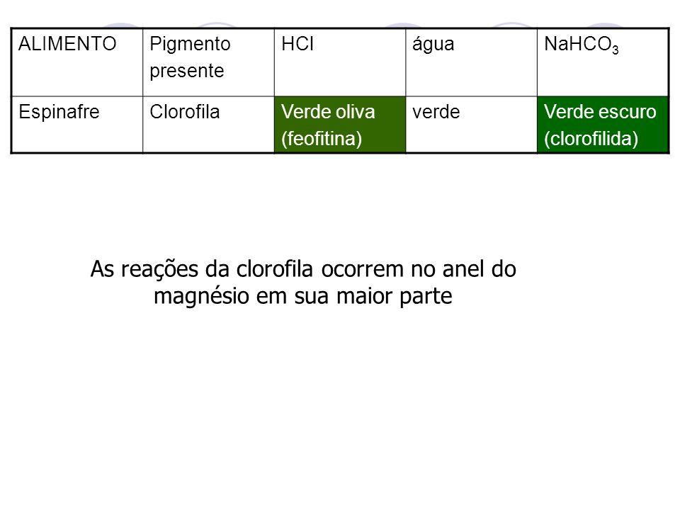As reações da clorofila ocorrem no anel do magnésio em sua maior parte