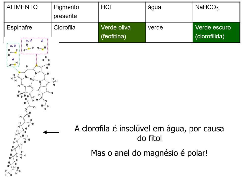 A clorofila é insolúvel em água, por causa do fitol