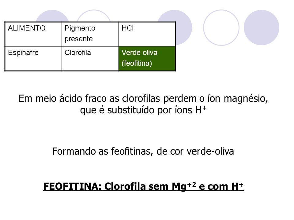 FEOFITINA: Clorofila sem Mg+2 e com H+
