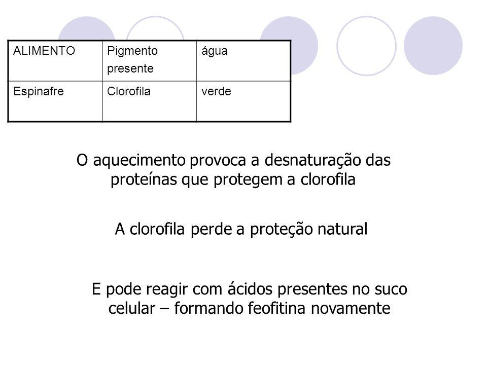 A clorofila perde a proteção natural