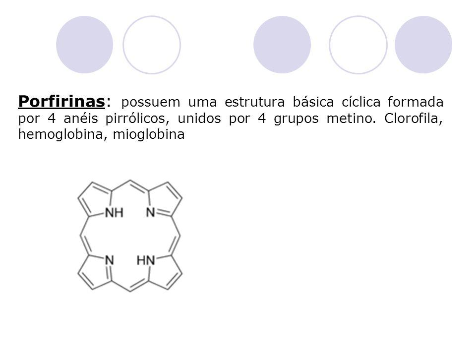 Porfirinas: possuem uma estrutura básica cíclica formada por 4 anéis pirrólicos, unidos por 4 grupos metino.