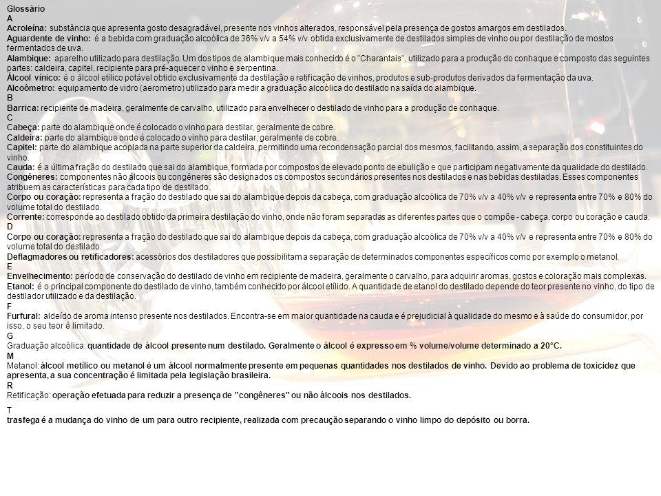 Glossário A.