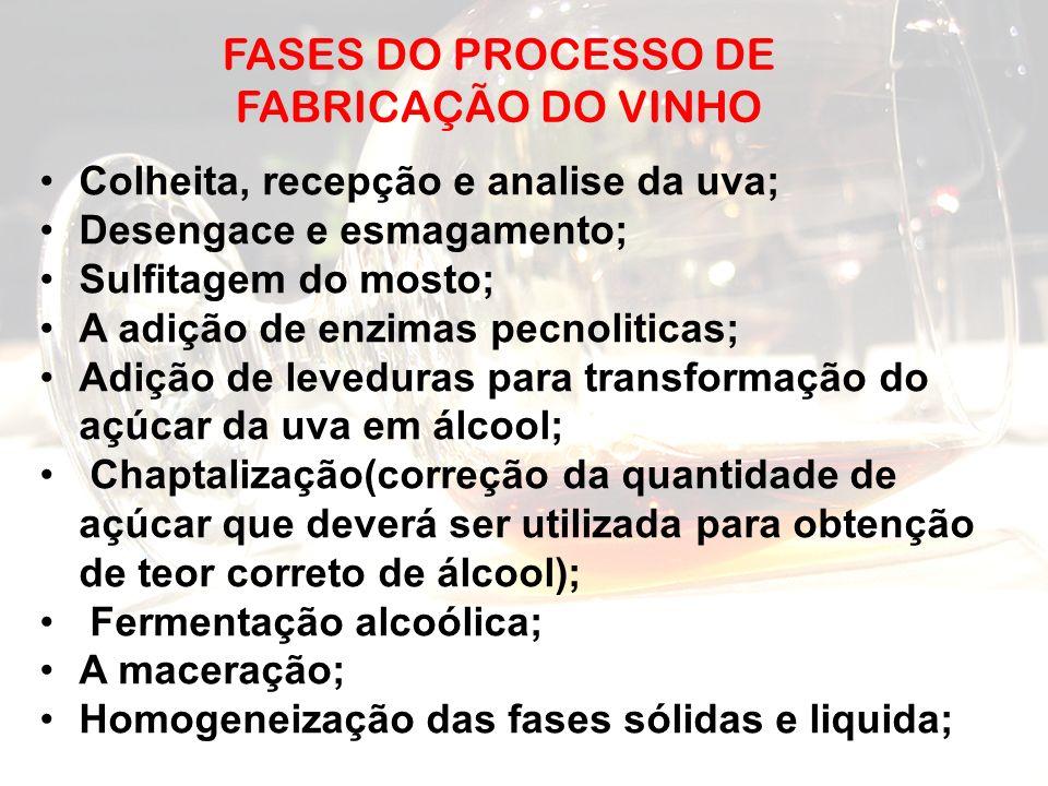 FASES DO PROCESSO DE FABRICAÇÃO DO VINHO