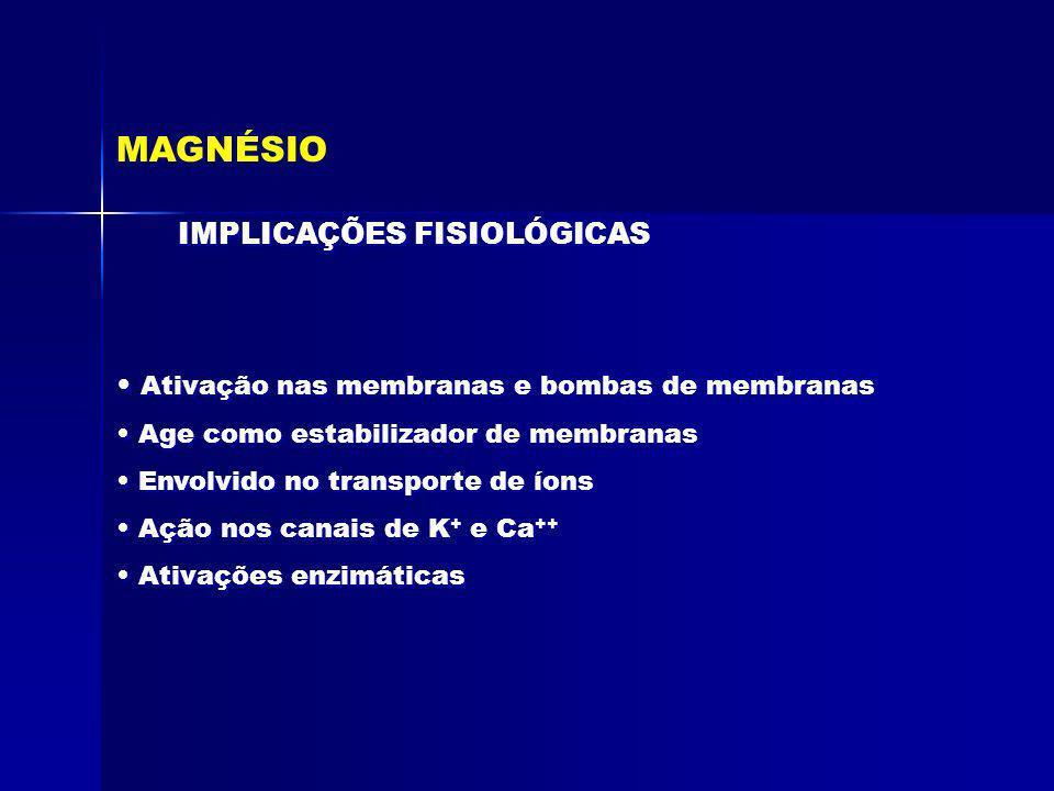 MAGNÉSIO IMPLICAÇÕES FISIOLÓGICAS