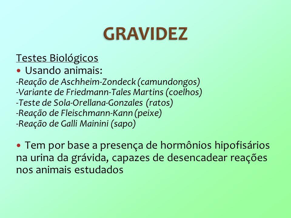 GRAVIDEZ Testes Biológicos Usando animais: