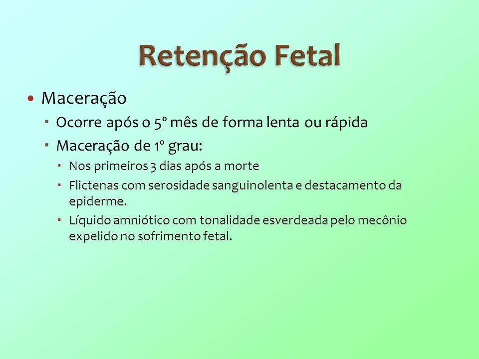 Retenção Fetal Maceração Ocorre após o 5º mês de forma lenta ou rápida