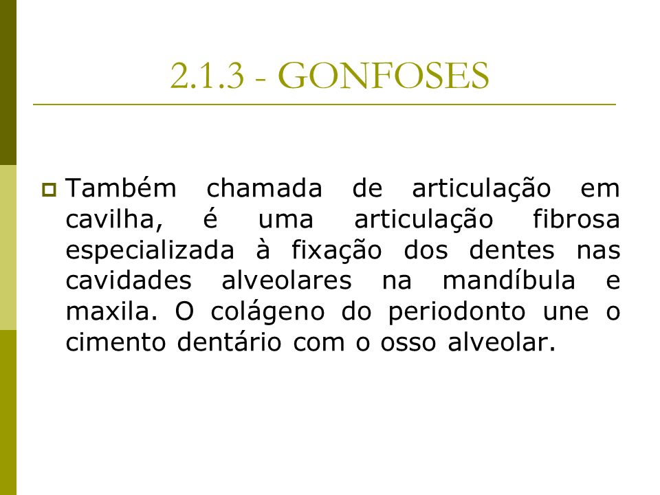2.1.3 - GONFOSES