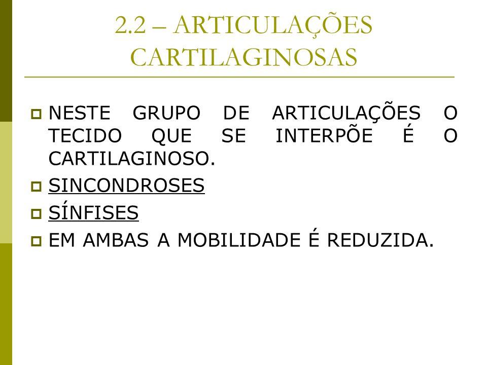 2.2 – ARTICULAÇÕES CARTILAGINOSAS