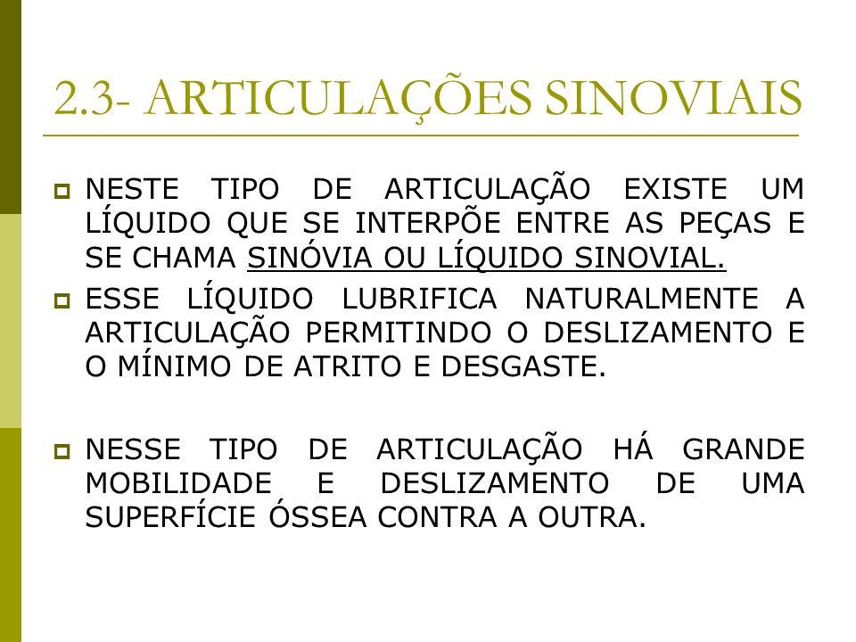2.3- ARTICULAÇÕES SINOVIAIS